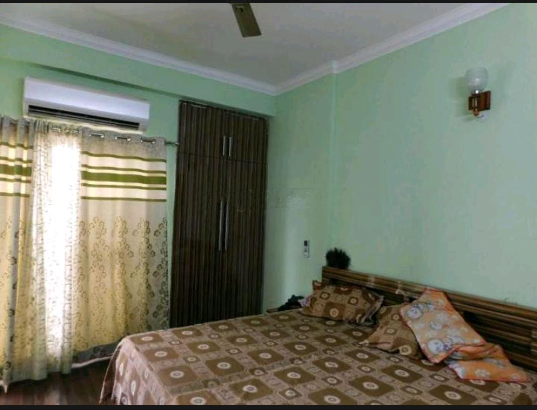 1 BHK 162 Sq.Mt. Independent House in Sector 30