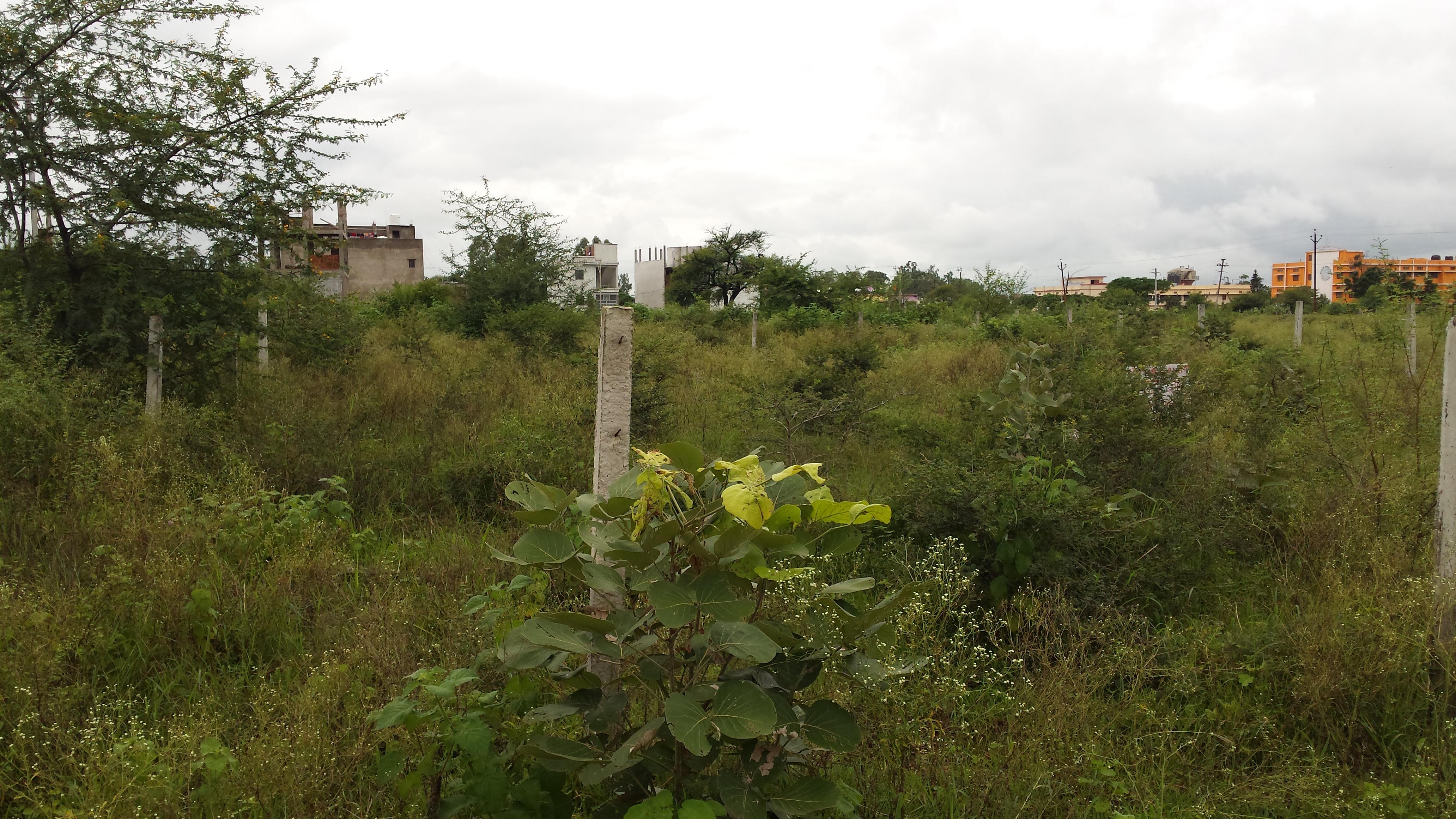 Plot For Sale in Karond