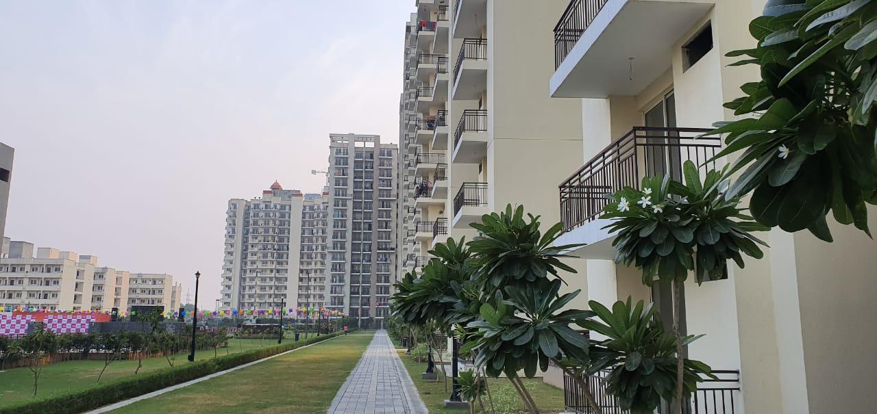 2 BHK + Servant Room 1300 Sq.Ft. Apartment in BPTP Park Grandeura