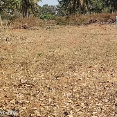 Plot For Sale in Bheemunipatnam