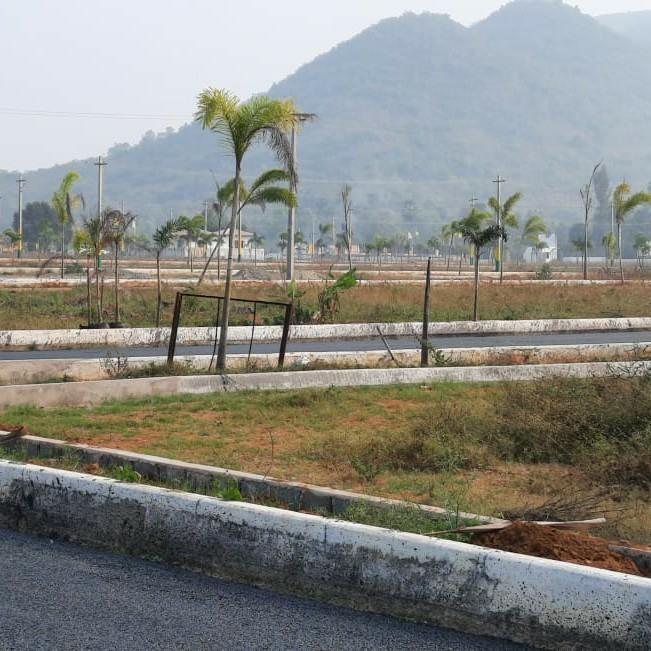 Plot For Sale in Thagarapuvalasa