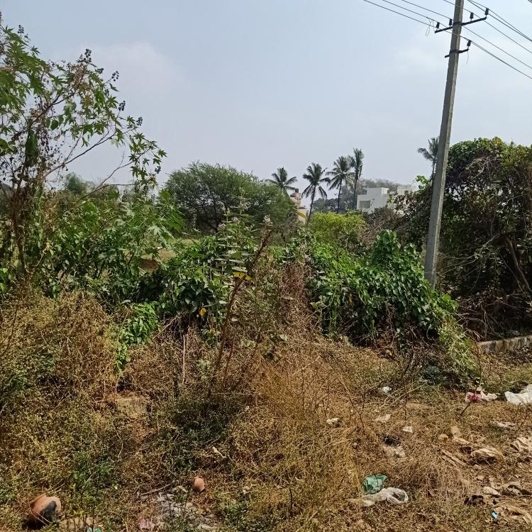 Property-Cover-Picture-basaveshwara-nagar-1845934