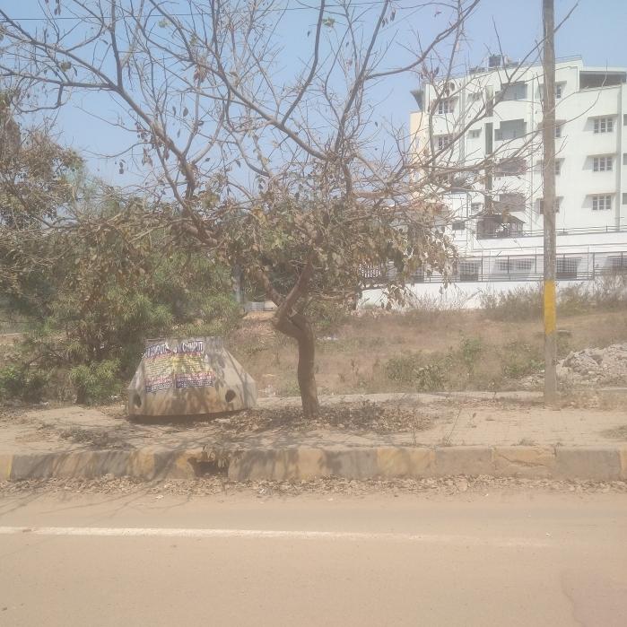 other-Picture-basaveshwara-nagar-1899602