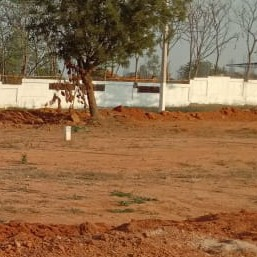 Property-Cover-Picture-shadnagar-1923188