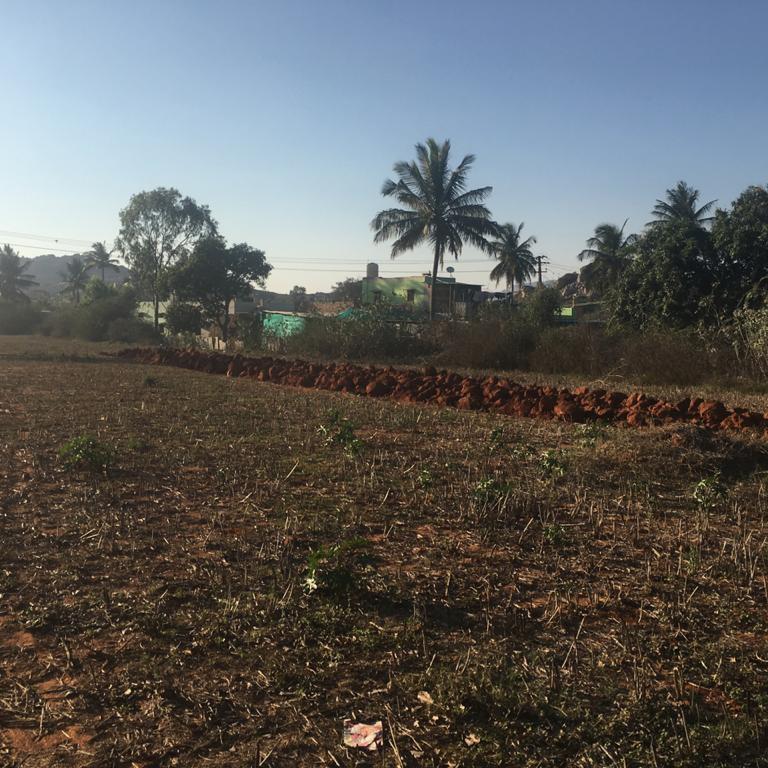 20 Acre Land in Devanahalli