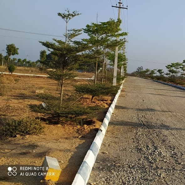 384 Sq.Yd. Plot in Sangareddy
