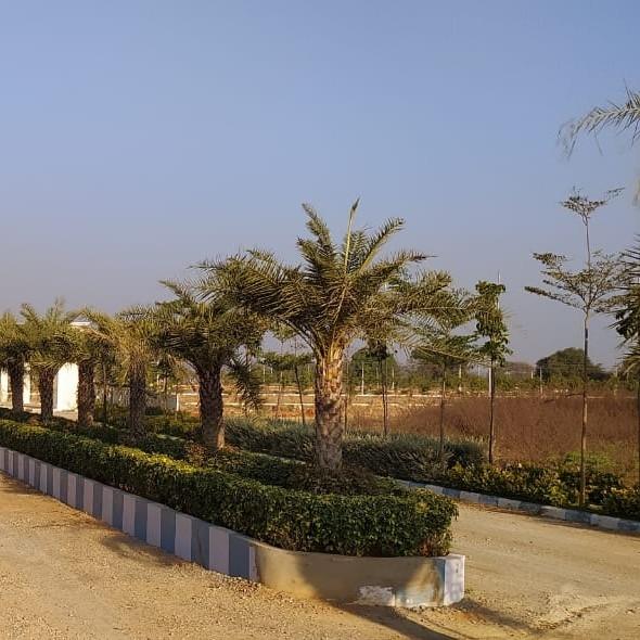 344 Sq.Yd. Plot in Sangareddy