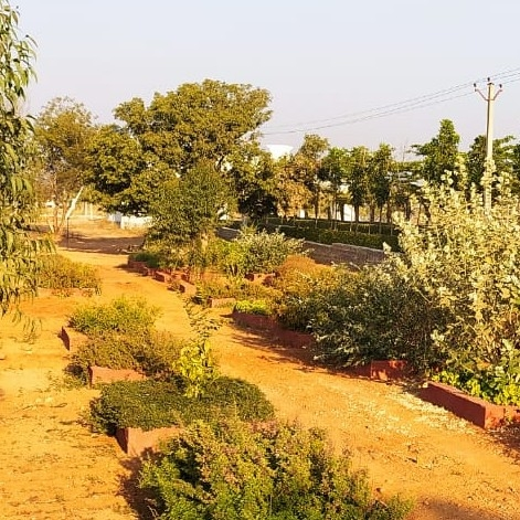 229 Sq.Yd. Plot in Sangareddy