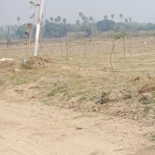 cover-image-Picture-shankarpalli-2092166