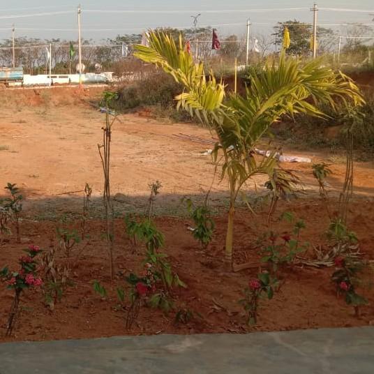 exterior-view-Picture-shankarpalli-2092985