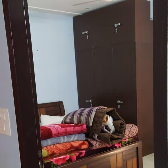 2 BHK + Pooja Room 1650 Sq.Ft. Builder Floor in Sector 38