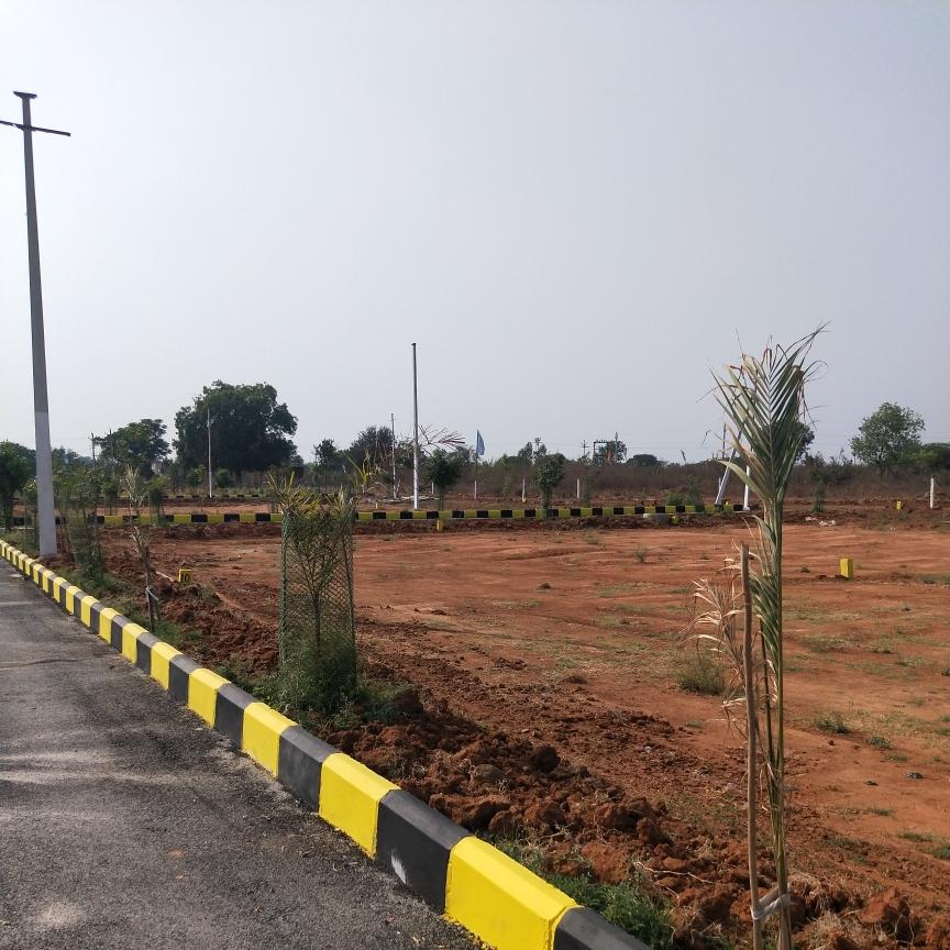 290 Sq.Yd. Plot in Shadnagar