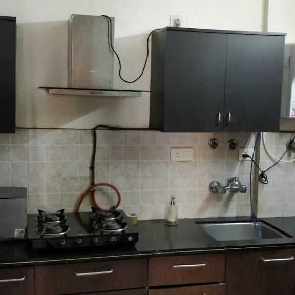 2 BHK + Pooja Room,Servant Room,Study Room,Extra Room  Builder Floor For Rent in Brahma Suncity