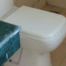 bathroom-Picture-srs-residency-2203240