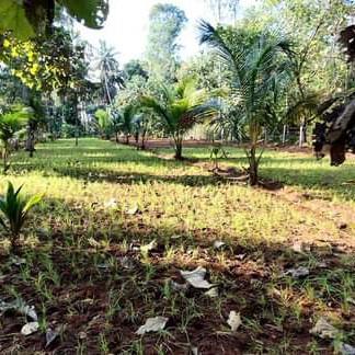 Property-Cover-Picture-hara-vijaya-valley-2228892