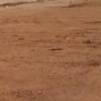 160 Sq.Yd. Plot in Shamshabad