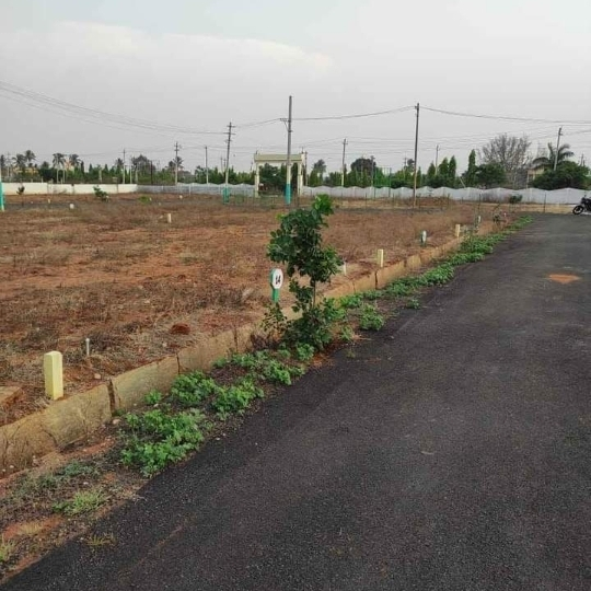 Property-Cover-Picture-kariobanahalli-2308956