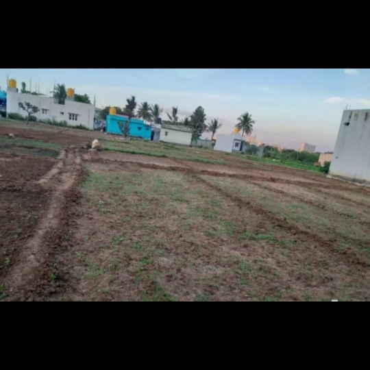 Property-Cover-Picture-aayush-queen-valley-villa-plots-2330412