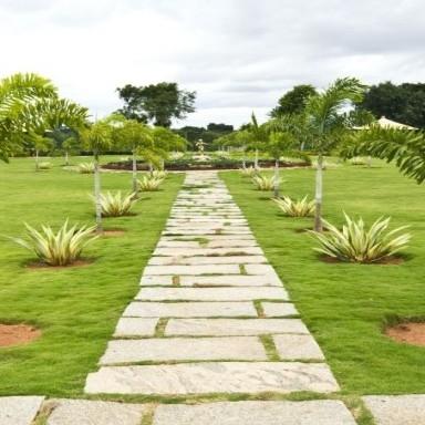 garden-Picture-dodda-banasvadi-2410463