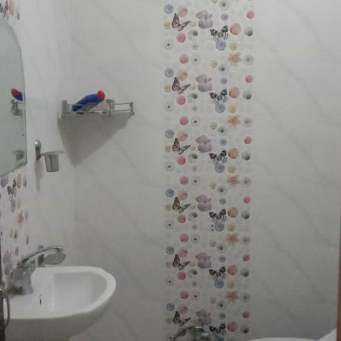 Property-Cover-Picture-matiyari-2505884