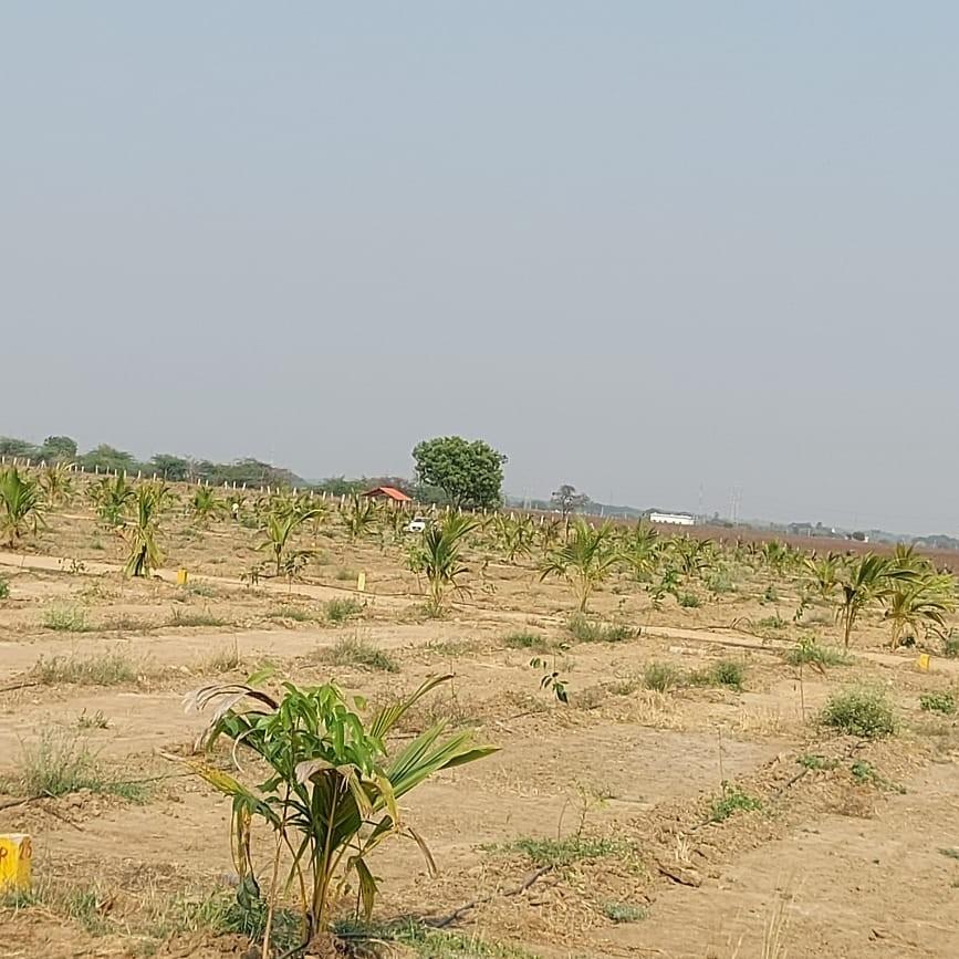 242 Sq.Yd. Plot in Aguru Vanam