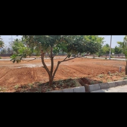 Property-Cover-Picture-thippasandra-2512484
