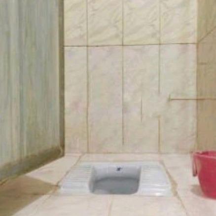 bathroom-Picture-om-gagangiri-chs-2513994