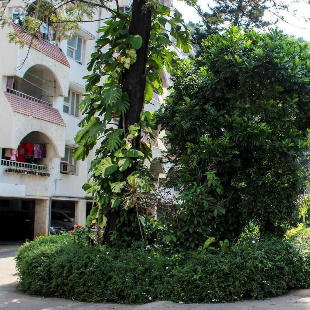 exterior-view-Picture-ranka-plaza-2634676