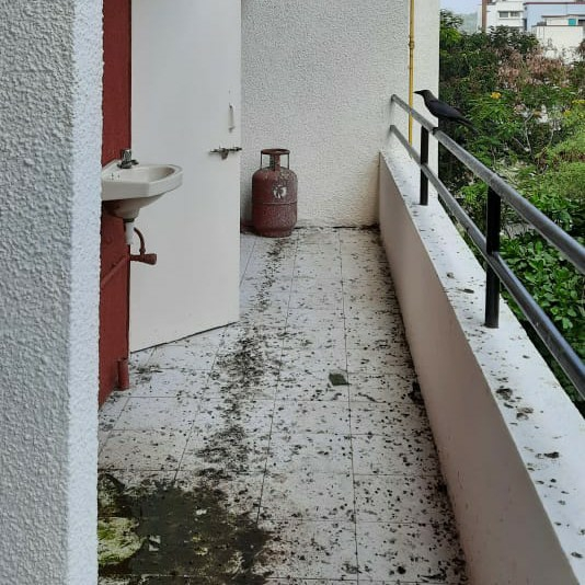 Property-Cover-Picture-suyog-aditya-residency-2640844