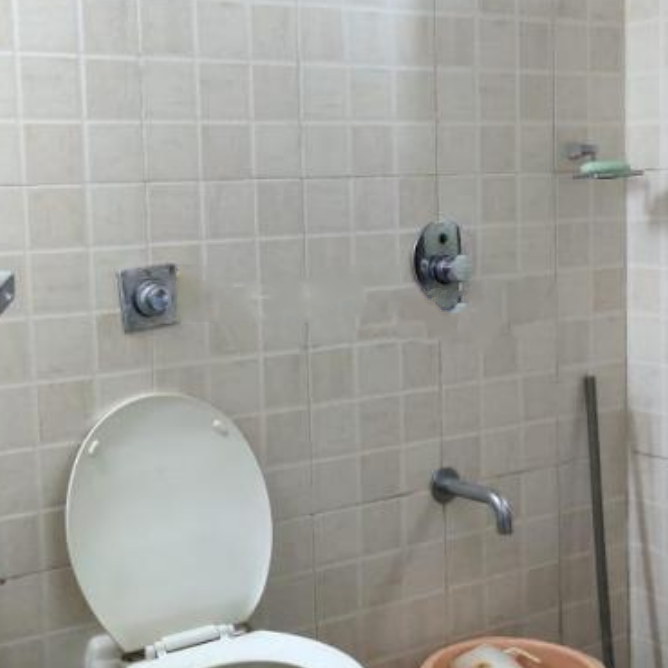 bathroom-Picture-the-spring-2650776