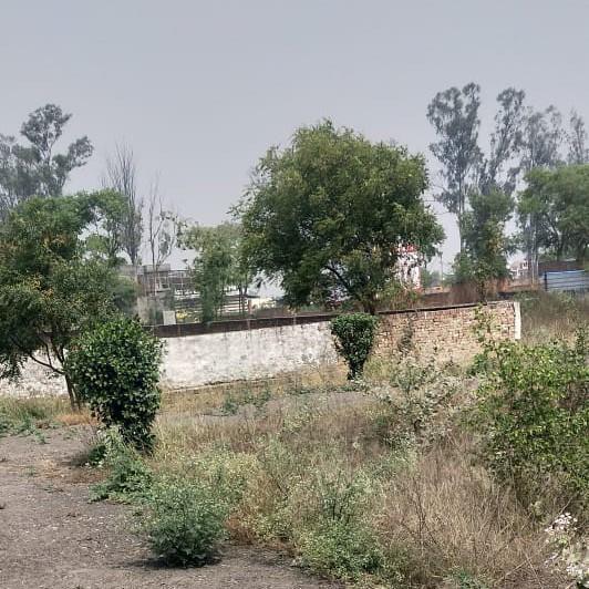 other-Picture-shastri-nagar-2651464