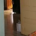 3.5 BHK + Pooja Room,Servant Room,Study Room,Extra Room 1645 Sq.Ft. Villa in Ramshe Project