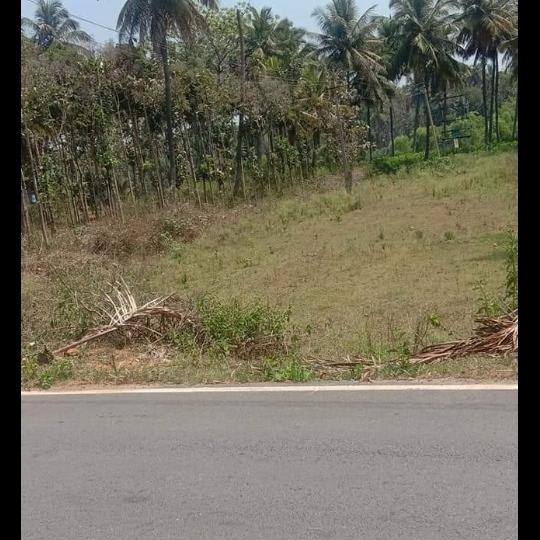 Property-Cover-Picture-paramount-pilatus-2661606