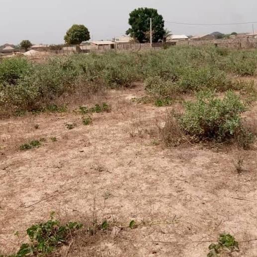 Property-Cover-Picture-bilas-pur-kandali-2717336