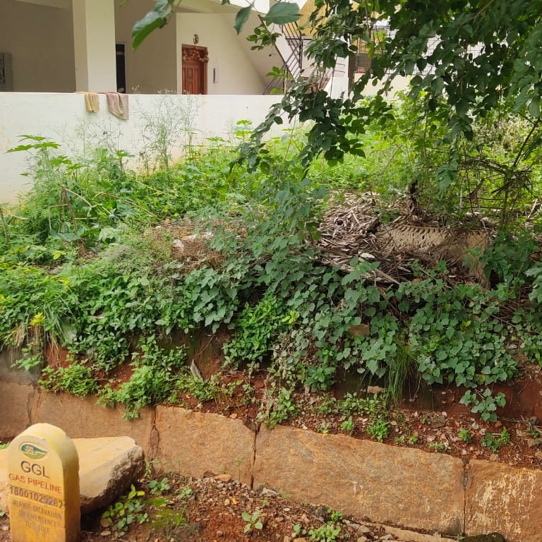 Property-Cover-Picture-lotus-residency-hebbal-2723988