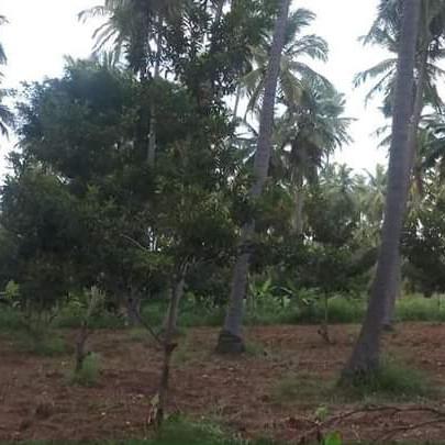 Property-Cover-Picture-puravankara-purva-270-degree-2757407