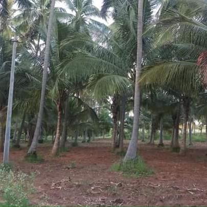 Property-Cover-Picture-skanda-prakriti-2757443
