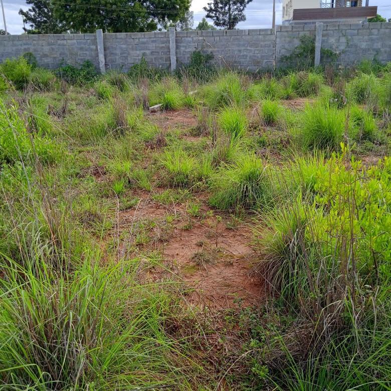 1 Acre Land in Bangalore Road Devanahalli