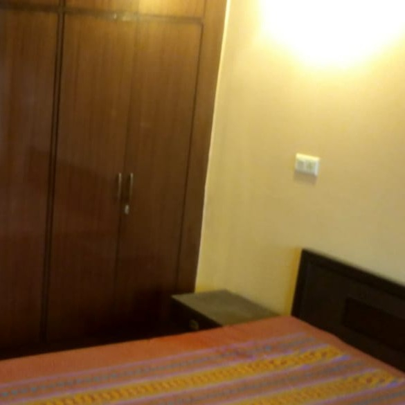 Property-Cover-Picture-alwar-bypass-road-2784347