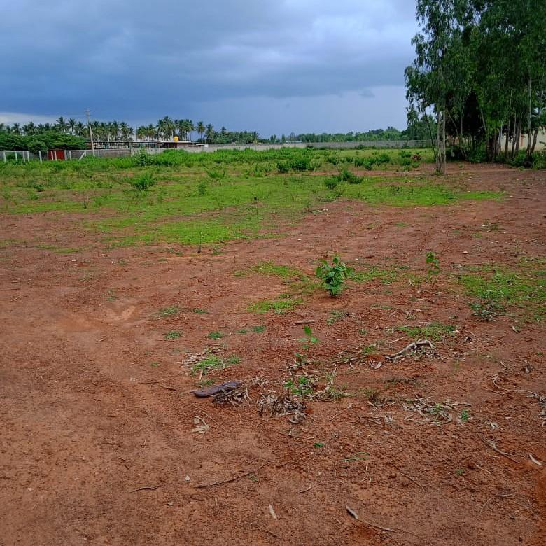 1200 Sq.Ft. Land in Bangalore Road Doudaballapura